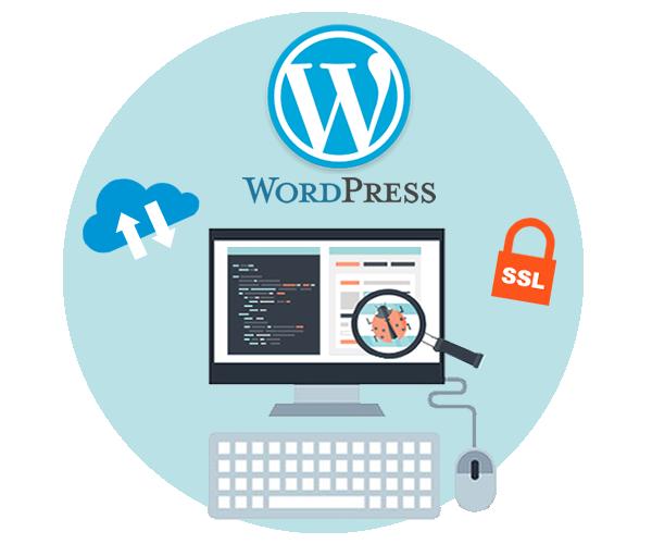 wordpress-maintenance-plans